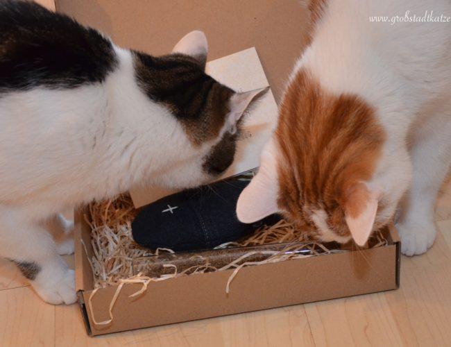 Baldrian-Katzenspielzeug-Fischi-Katzenkugel2