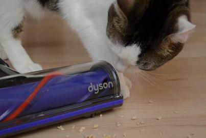 Handstaubsauger Dyson V8 Beitragsbild2