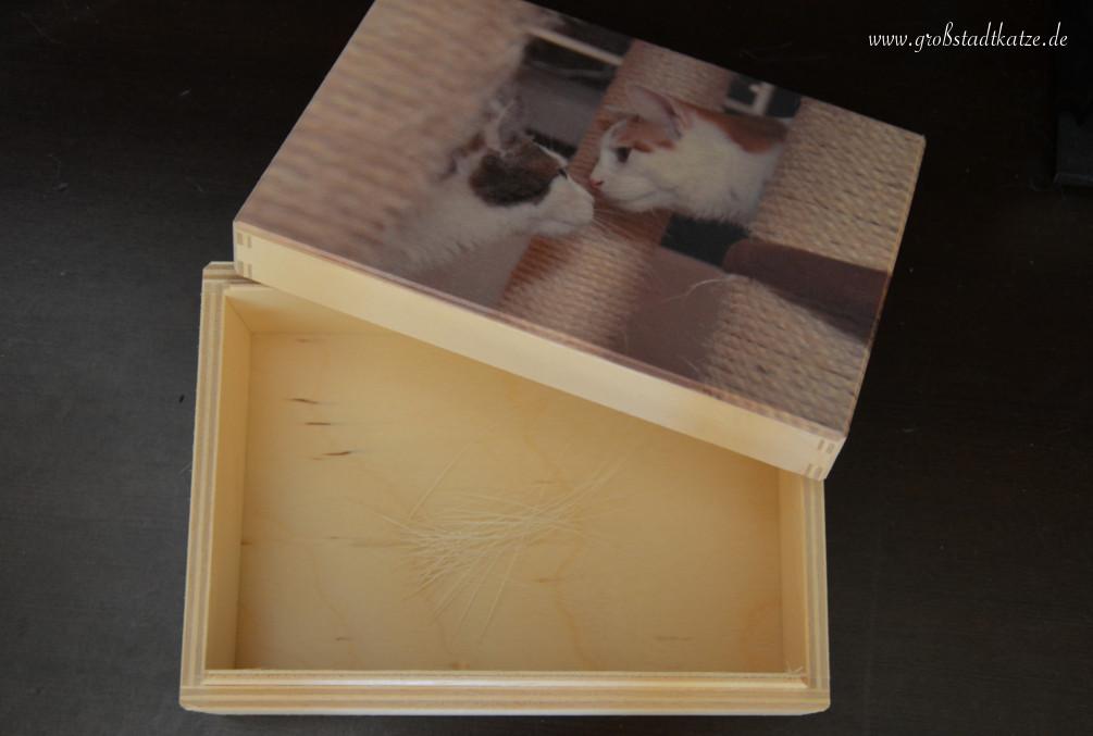 ticks katzen schnurrhaare sammeln personello. Black Bedroom Furniture Sets. Home Design Ideas