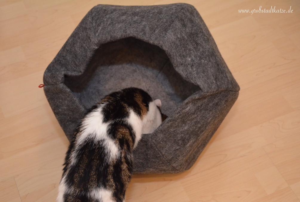 Katzenkugel_XL_Lilli