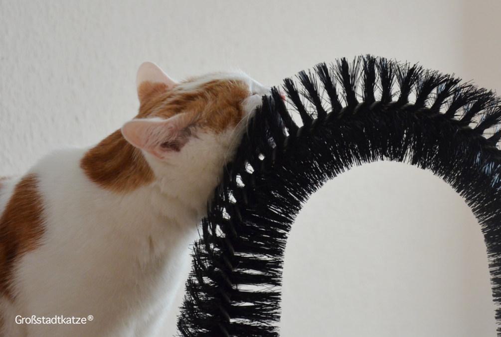My-Petez-Massage-und-Enthaarungsbogen-für-Katzen-2
