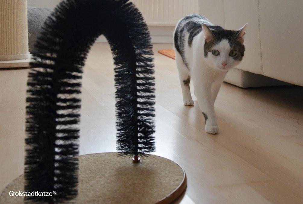 My-Petez-Massage-und-Enthaarungsbogen-für-Katzen-9
