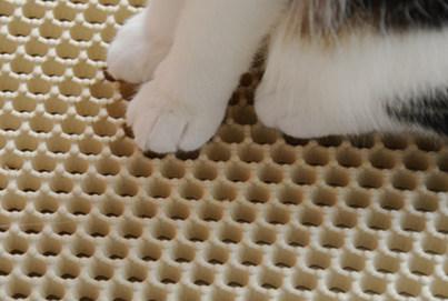 Zaubermatte Cat Litter Mat