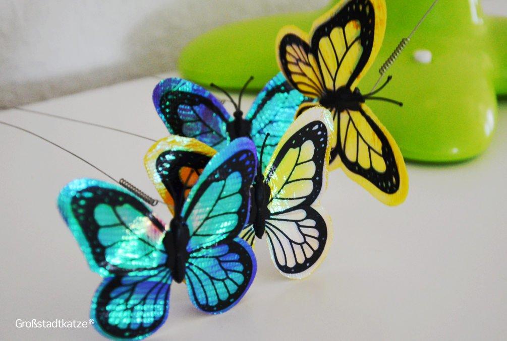 Schmetterling-Katzenspielzeug-10