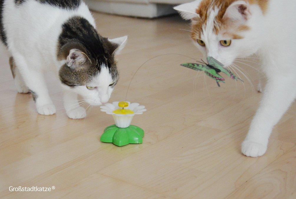 Schmetterling-Katzenspielzeug-9