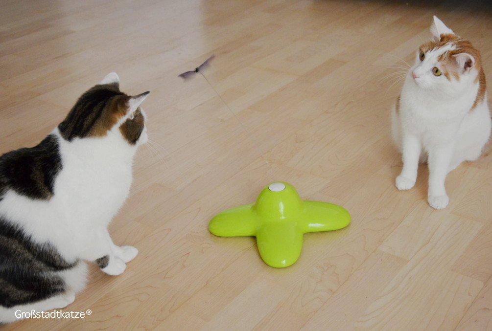 Schmetterling-Katzenspielzeug