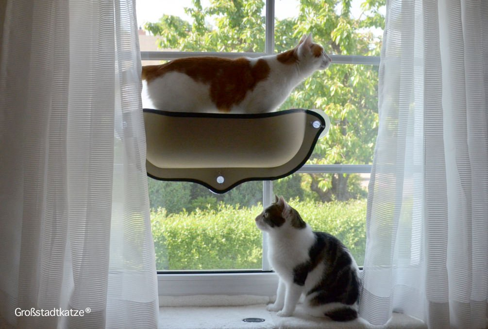Window-Cat-Bed-8