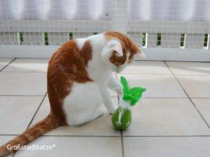 TRIXIE Katzenspielzeug Steh-Auf-Frosch   Steh-Auf-Ei   Turning Feather