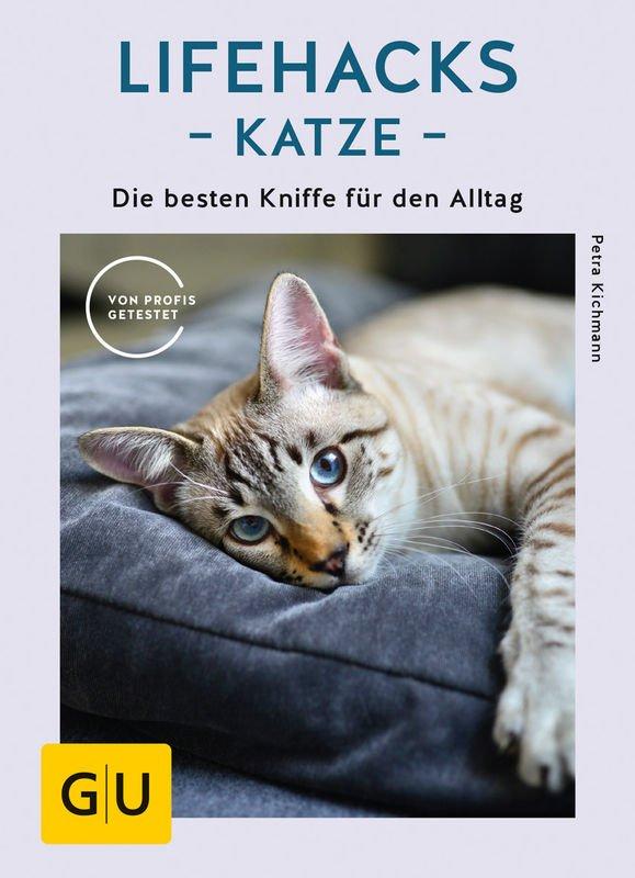 Großstadtkatze Ratgeber: Lifehacks Katze
