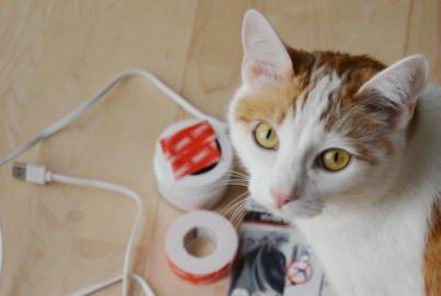 Ventifresh Erfahrung |Ventifresh Katzenklo |Katzenklo stinkt