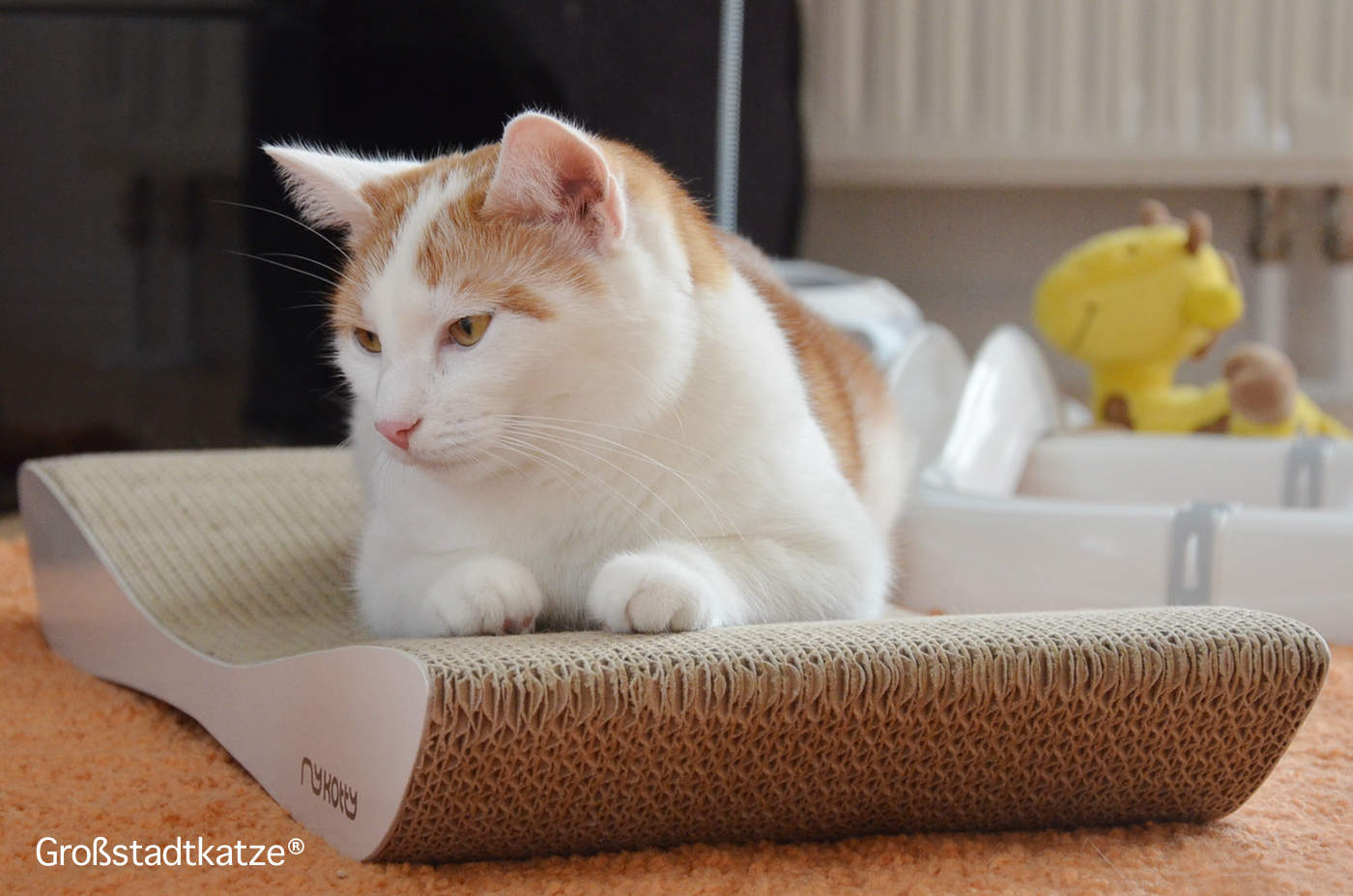 Kratzliege | myKotty | Katzenliege | stylisches Katzenzubehör