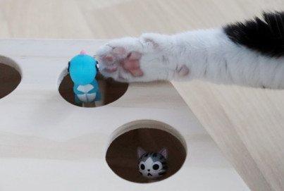 Auoker interaktives Katzenspielzeug Beitragsbild
