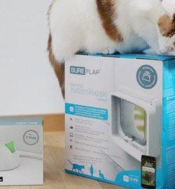 Katzenklappe4 Beitragsbild