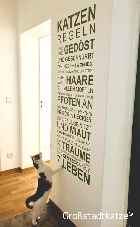 Wandtattoo Katze | Spruch Katze | Wandbild Katze | Katzenbild Wohnung