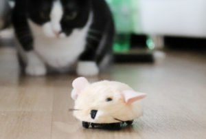 Fang die Micro Mouse