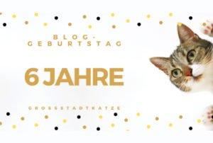 Geburtstag: Sechs Jahre Großstadtkatze.de