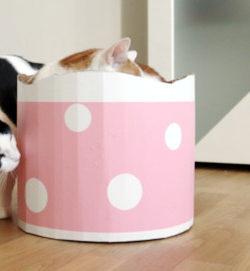 DIY Katzen | Bett aus Pappe für Katzen | basteln für Haustiere