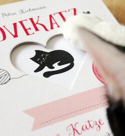 Beitragsbild Eintragbuch Katze LOVEKATZ