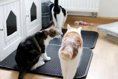 Rutschfeste Katzenklo Matte nach Maß | Vorleger Katzentoilette nach Maß