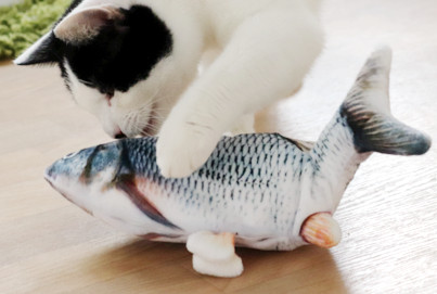 Katzenspielzeug_beweglicher_Fisch_Catnip_Beitragsbild